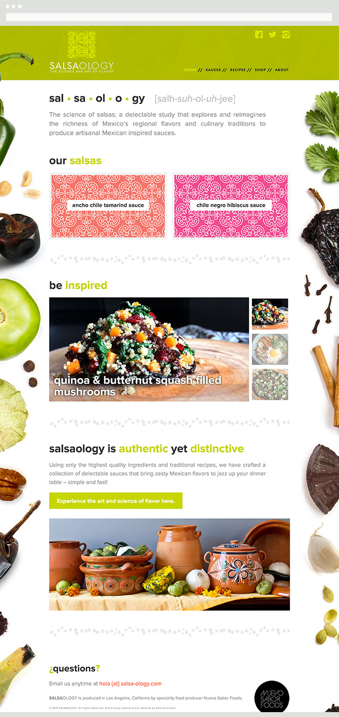Image of the Salsaology Homepage